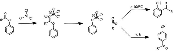 Photo-Fries Rearrangement Mechanism